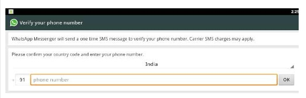Customizing whatsapp