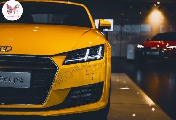 How To Choose Car   SkillsAndTech