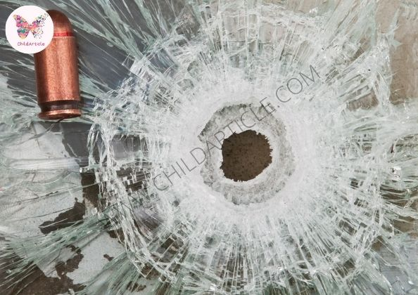 Why We Need Bulletproof Car Windows | SkillsAndTech