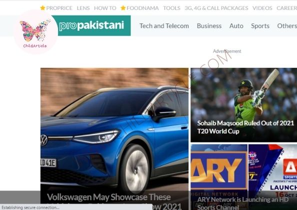 Propakistani.pk Review, Real Or Fake, Wiki, Contact Number | ChildArticle
