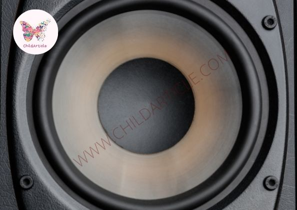What Are Speaker Drivers | ChildArticle